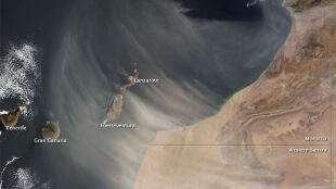 Kanary przykrył saharyjski piach