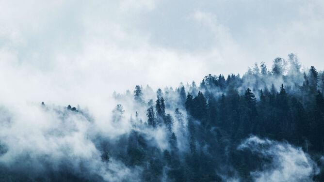 Prognoza pogody na dzisiaj: <br />zimne strugi deszczu ze śniegiem