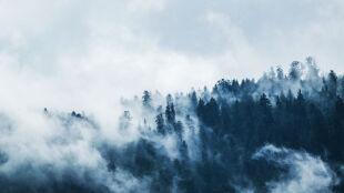 Prognoza pogody na dzisiaj: zimne strugi deszczu ze śniegiem