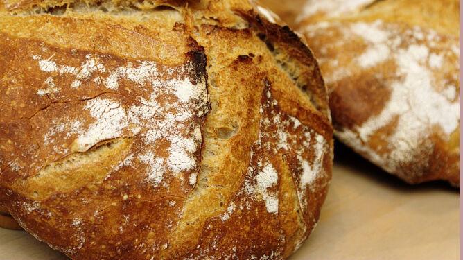 Jaki chleb wybrać. Który jest najzdrowszy?